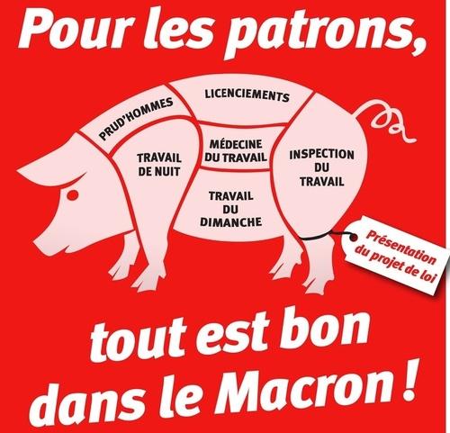 """""""La patrie est en danger""""Les moutons rêveurs vont voter Macron et ce sont les islamistes qui se marreront."""
