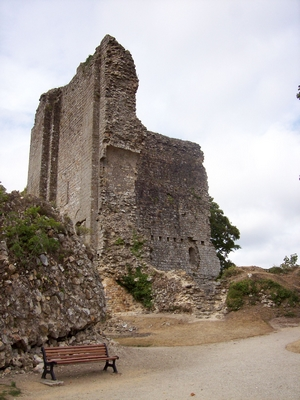 DOMFRONT Ruines Donjon