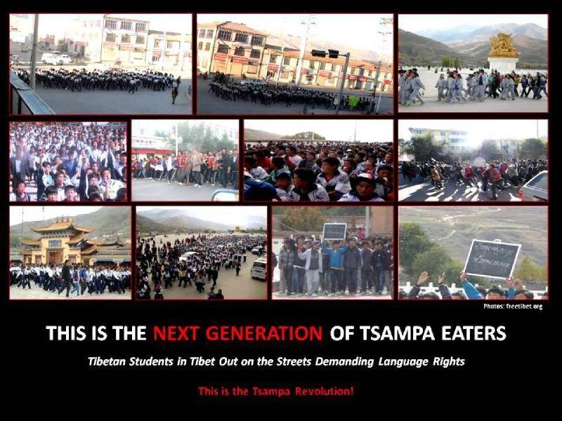 Tsampa revolution next