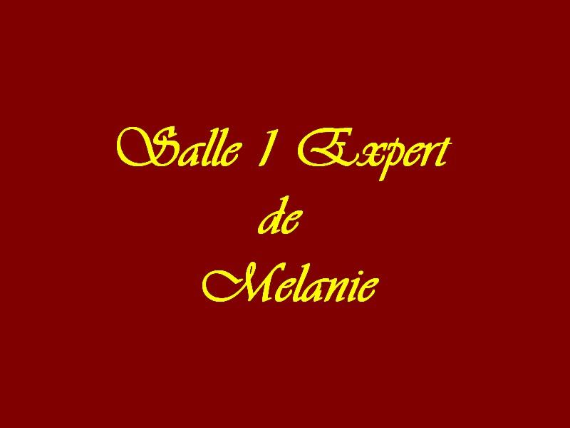 Salle 1 Experts de Mélanie
