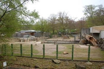 Zoo Osnabruck d50 2012 132