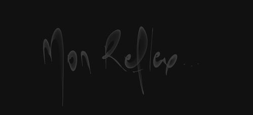 Quelques explications concernant votre APN reflex
