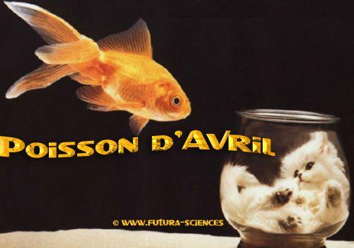 poisson d'avrile à tous