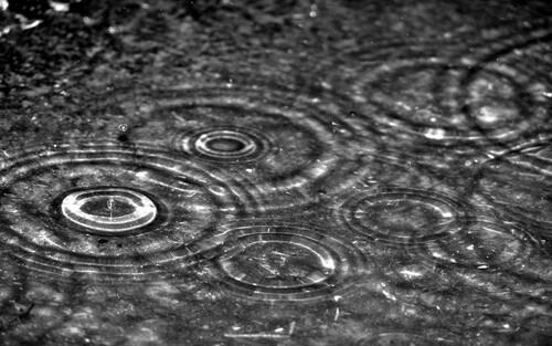 Pluie douce viendra...