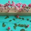Roses 3.jpg