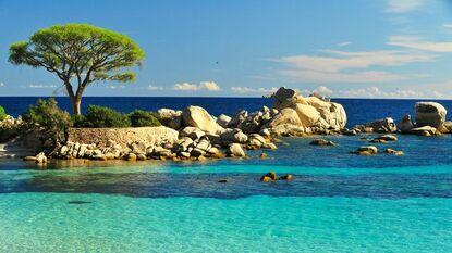 La Corse à la maison !