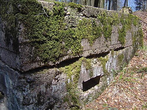 roche pierre piquee neuvevoie derzognier 047
