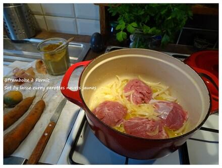 Sot l'y laisse curry aux carottes et navets jaunes