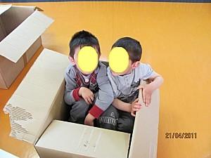 Cartons-3382