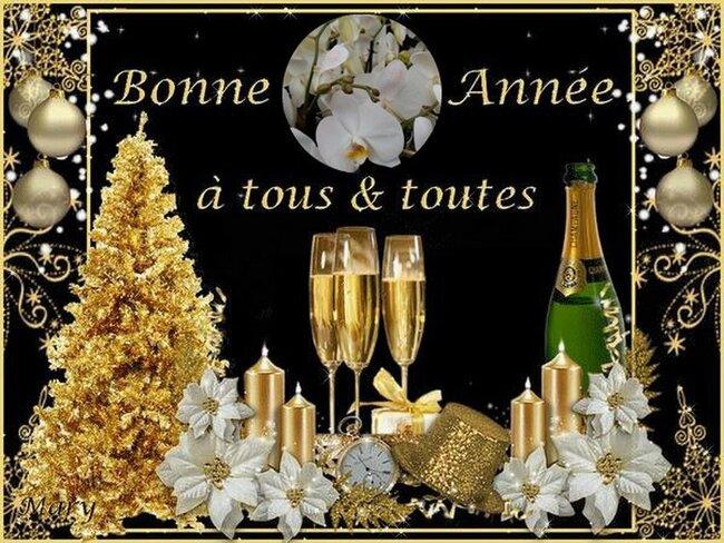 carte Bonne année (servez vous )