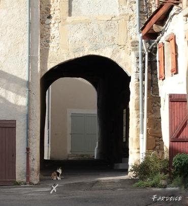 Le chat attend dans une rue d'Alixan