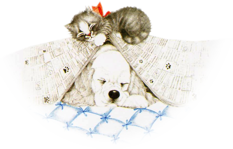 Tube chien et chat