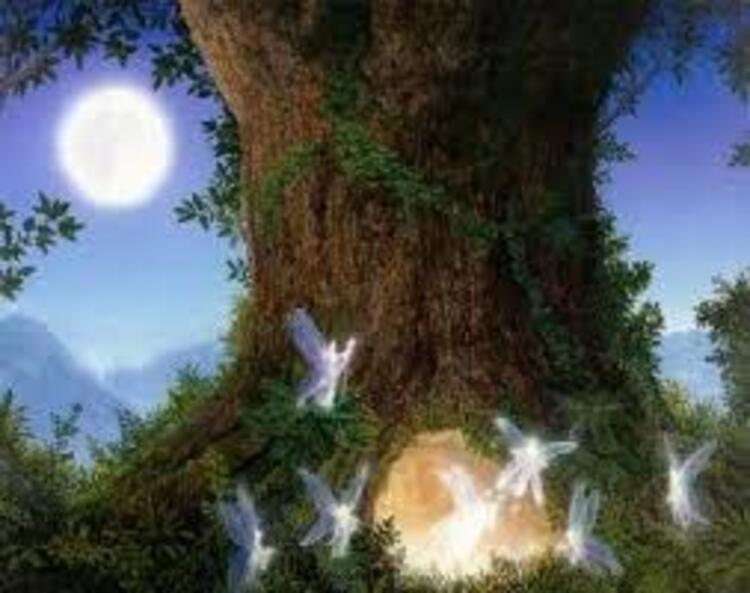 L'elfe de Syllia