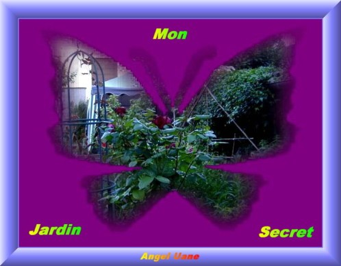 Mon-J-Secret-Papillon-Copi-Angel-Uane.JPG