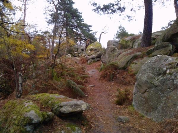 Sentier-Denecourt-17.jpg
