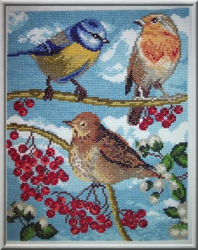 Marie Coeur, Les oiseaux du jardin