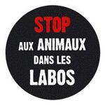 Stop au animaux dans les labos !