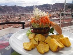 Burger végétarien avec vue sur les toits de la ville