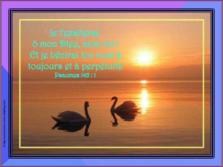 Je t'exalterai, ô mon Dieu - Psaumes 145 : 1