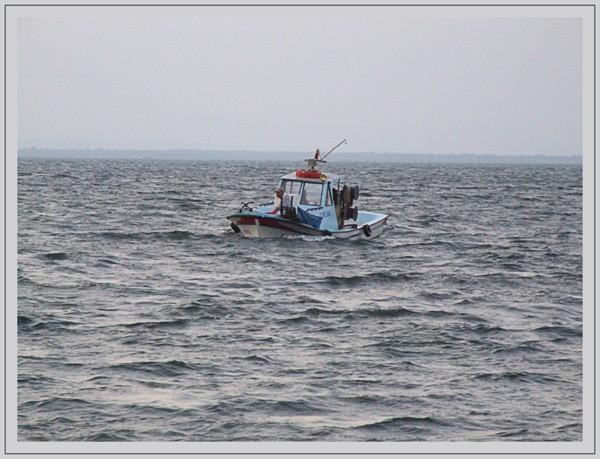 bateu de pêche en mer