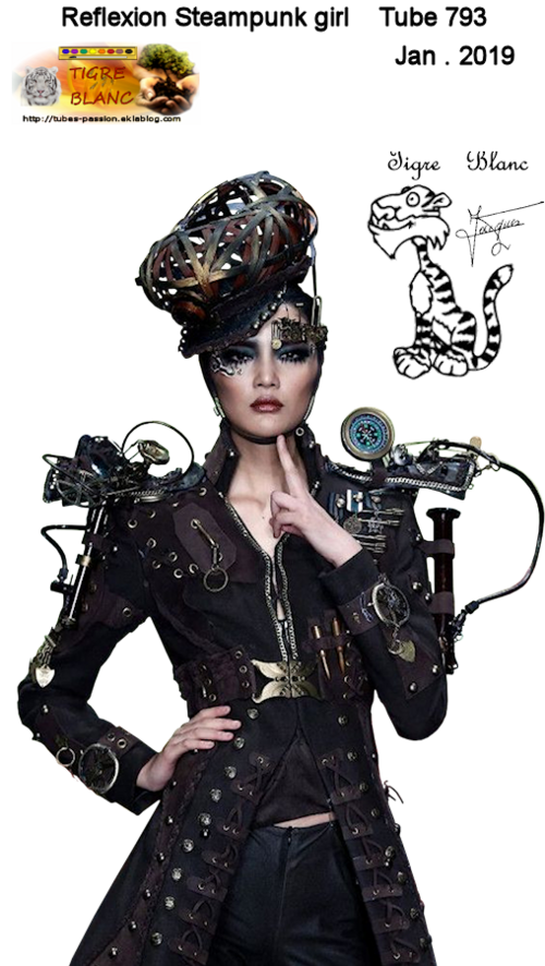 -- Le monde des Steampunks -- 1
