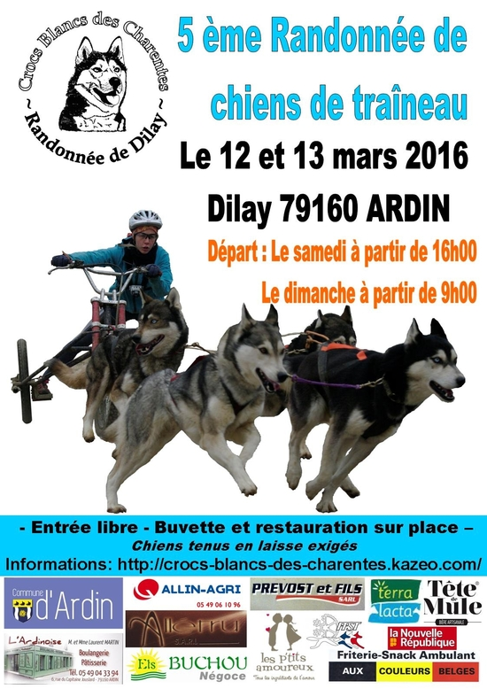 Affiche Dilay 2016