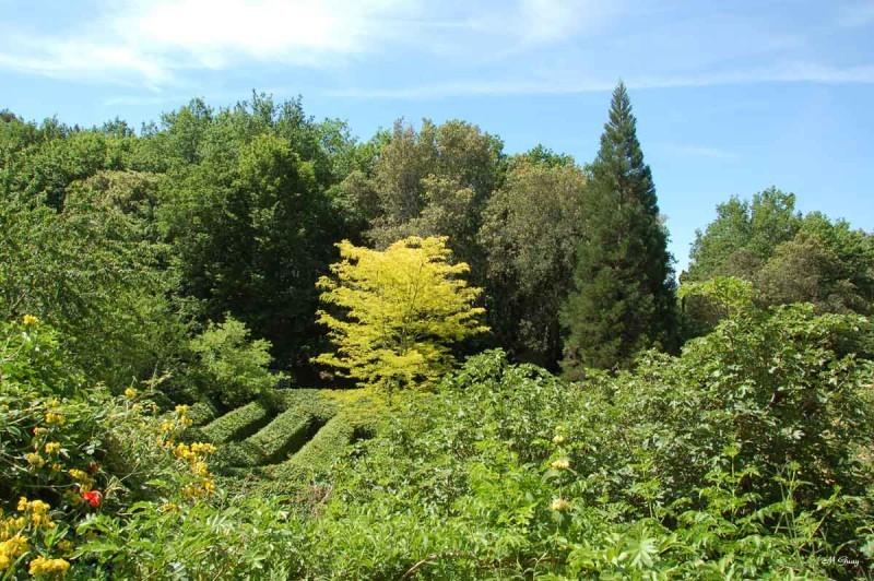 jardins-cadiot-2750.jpg