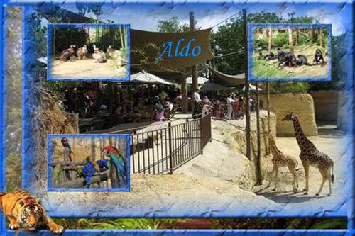 PPS Zoo de Doué la Fontaine