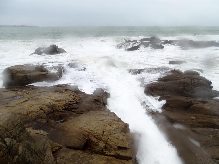 Dernier jour de janvier sur le sentier côtier de Lomener à Kerroch(Morbihan) (fin)