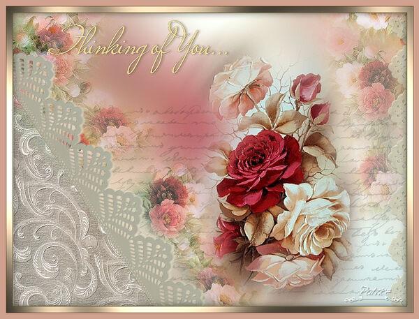 Roses etc...