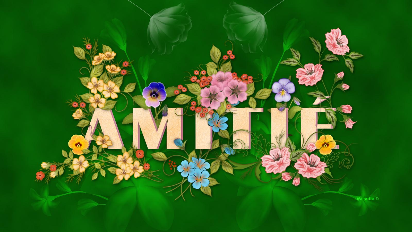 les fleurs de l 39 amiti en fond d 39 cran chez mireille d. Black Bedroom Furniture Sets. Home Design Ideas