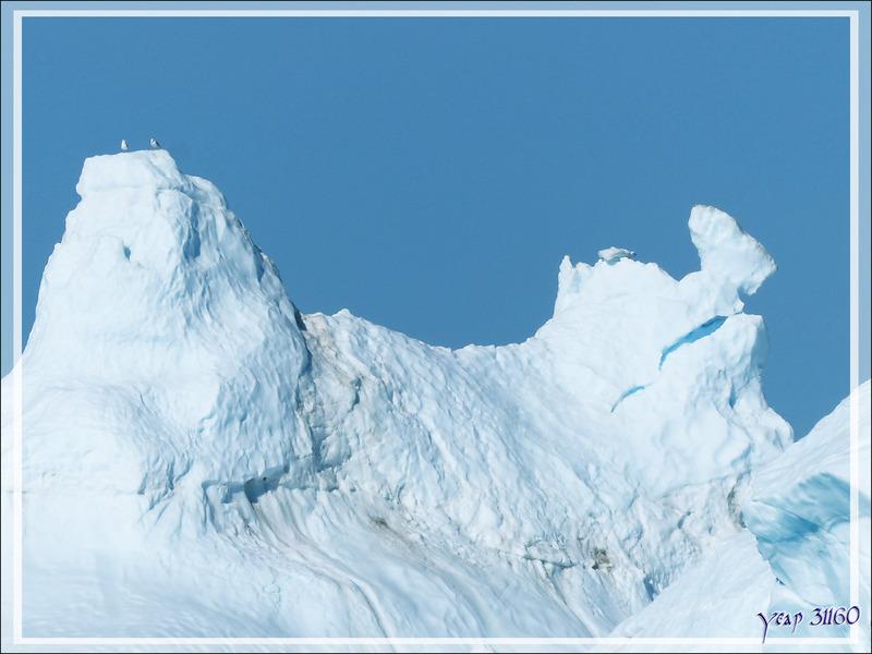Encore et toujours le bel iceberg qui poursuit lentement sa route - Ilulissat - Groenland