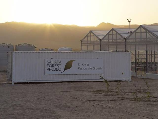 Sahara Forest Project.