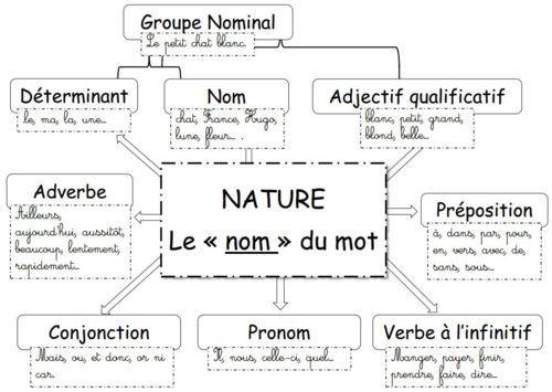 Français - GRAMMAIRE - carte mentale : la nature des mots: