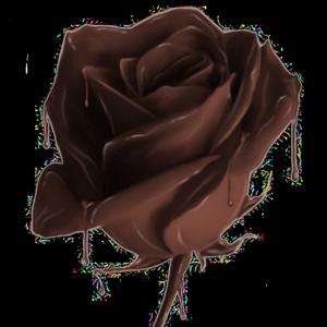 ♥Chocolat♥