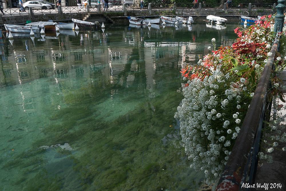 Annecy, toujours des fleurs ou presque...