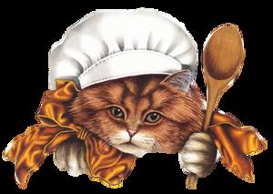 tube cuisine33