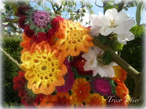 Des fleurs !!!
