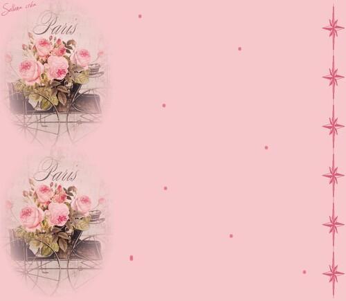 Papiers IM  * roses anciennes *