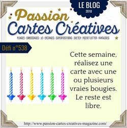 Passion cartes Créatives#538 !