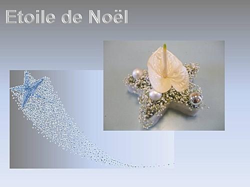 2012 etoile de noel (1)