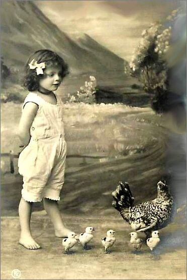 15 - Poules et enfants, suite