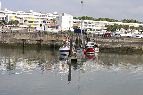 au port de Royan, un matin (8)