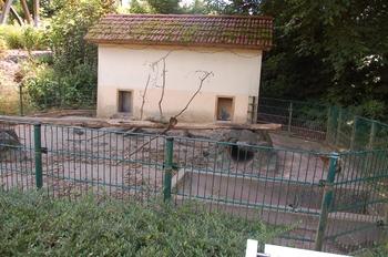 Zoo Neunkirchen 2012 135