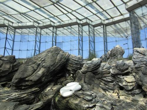 L'aquarium de lisbonne - suite !
