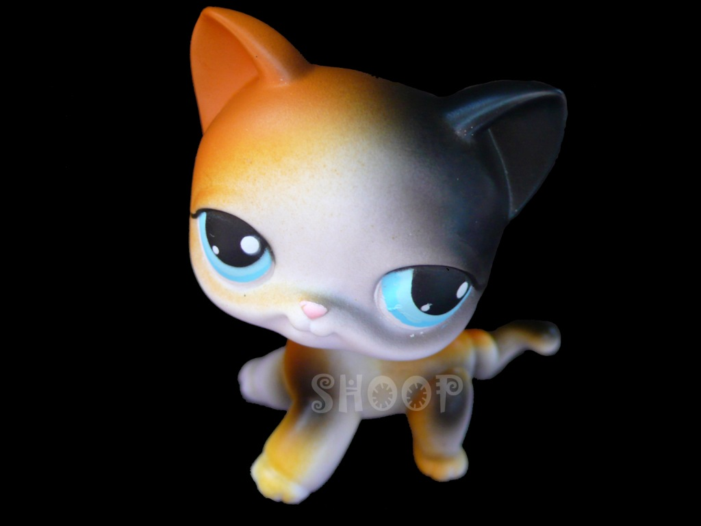 LPS 106