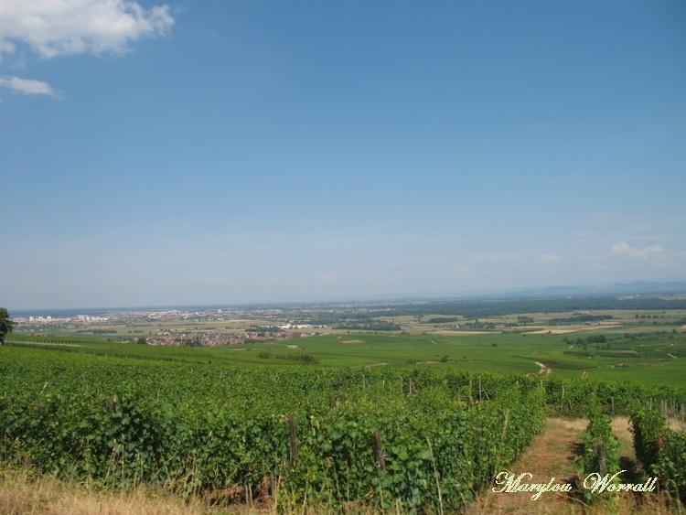 Promenade en TGV 7/7 : Repas à Pfaffenheim et Retour