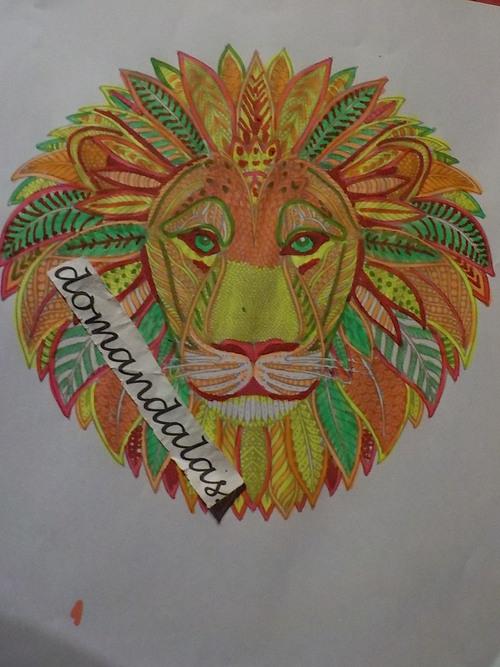 DOMANDALAS coloriage têtes lion