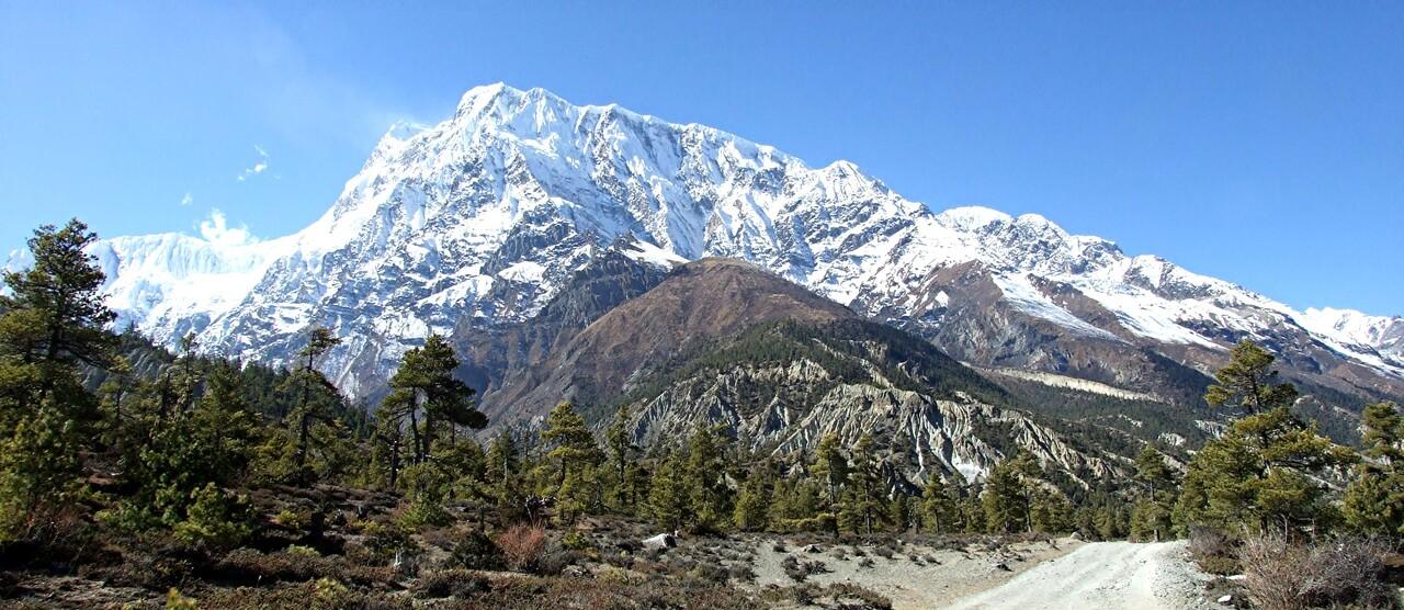 6-2/ Népal / le tour des Annapurnas - vers le col du thorong (3)