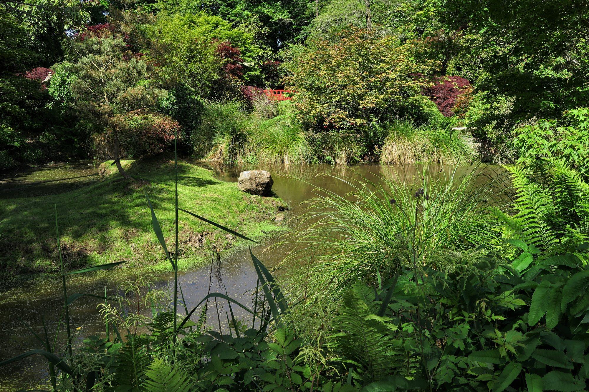 Parc Botanique de Haute-Bretagne : Jardin de Dionysos